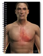 The Cardiovascular System Spiral Notebook