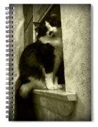 2986 Spiral Notebook