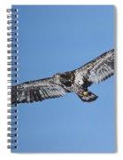 2nd Year Flight In The Sun Spiral Notebook