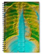 A Normal Chest X-ray Spiral Notebook