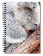 Adorable Koala Bear Taking A Nap Sleeping On A Tree Spiral Notebook