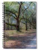 Allee Of Oaks Spiral Notebook