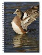 American Widgeon Spiral Notebook