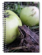 3 Apples And A Frog Spiral Notebook