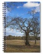 3 Appleton Trees Spiral Notebook