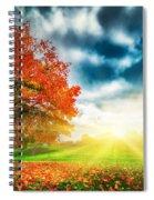 Autumn Fall Landscape In Park Spiral Notebook