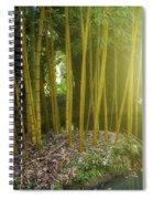 Bamboo Spiral Notebook