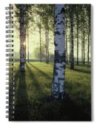 Birch Trees By The Vuoksi River Spiral Notebook