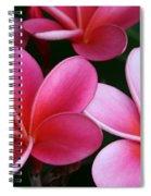 Breathe Gently Spiral Notebook