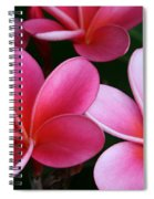 Breathe Gently Spiral Notebook
