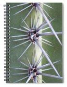 Cactus Thorns Spiral Notebook