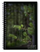 Can't See The Forest Spiral Notebook