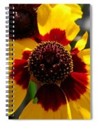 Coreopsis Or Golden Tickseed Spiral Notebook