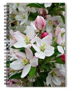 Crabapple Blossoms Spiral Notebook