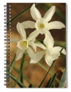 3 Daffodils Spiral Notebook