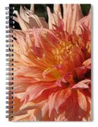 Dahlia Named Intrepid Spiral Notebook