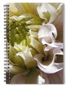 Dahlia Named Strawberry Ice Spiral Notebook