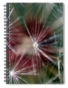 Dandelion Seed Head Spiral Notebook