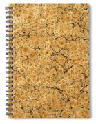 Decorative End Paper Spiral Notebook