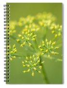 Yellow Dill Flower Spiral Notebook