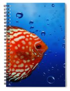 Discus Fish Spiral Notebook