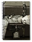 Doll In Suitcase Spiral Notebook