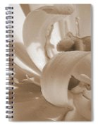 Double Late Tulip Named Angelique Spiral Notebook