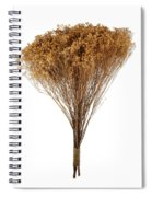 Dry Flowers Bunch Spiral Notebook