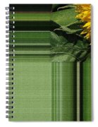 Dwarf Sunflower Named Teddy Bear Spiral Notebook