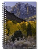 Eastern Sierras In Autumn Spiral Notebook
