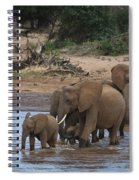 Elephants Crossing The River Spiral Notebook