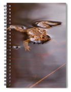 European Common Brown Frog Spiral Notebook