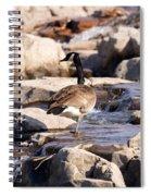 Falls Park Waterfalls Spiral Notebook