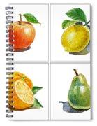 Farmers Market Delight  Spiral Notebook