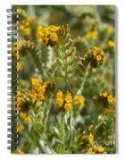 Fiddleneck Flowers Spiral Notebook
