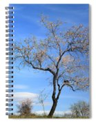 Flowering Almond Spiral Notebook