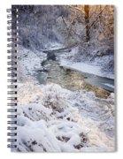 Forest Creek After Winter Storm Spiral Notebook