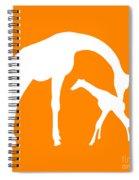 Giraffe In Orange And White Spiral Notebook