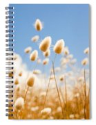 Golden Field Spiral Notebook