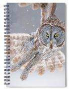 Great Grey Owl Spiral Notebook