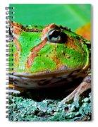 Green Fantasy Frogpacman Frog Spiral Notebook