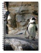 Humboldt Penguin Spiral Notebook