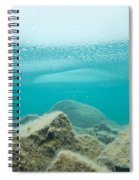 Ice Floats In Shallow Lake With Rock Reflections Spiral Notebook