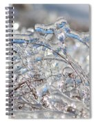 Ice Storm Alfalfa Spiral Notebook
