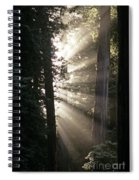 Jedediah Smith Redwoods State Park Redwoods National Park Del No Spiral Notebook