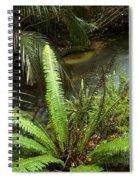 Jungle Stream Spiral Notebook