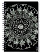 Kaleidoscope Ernst Haeckl Sea Life Series Black And White Set On Spiral Notebook
