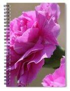 Lavender Carnations Spiral Notebook
