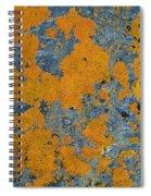 Lichened Rocks Spiral Notebook