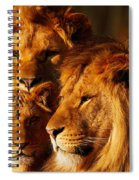 Lion Family Close Together Spiral Notebook